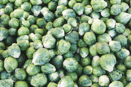 brussel-sprouts-pile_4460x4460