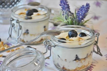 yogurt-1612787_640